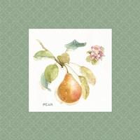 Orchard Bloom II Border Fine Art Print