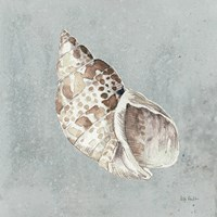 Sand and Seashells II Framed Print