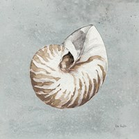 Sand and Seashells I Fine Art Print