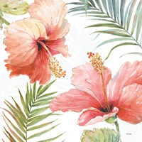 Tropical Blush II Fine Art Print