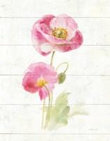 June Blooms IV Framed Print