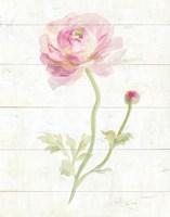 June Blooms I Framed Print