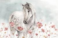 Wild Horses I Fine Art Print