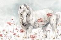 Wild Horses II Framed Print