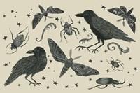 Hocus Pocus V Fine Art Print