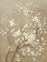 White Cherry Blossom I Neutral Crop Bird Fine Art Print