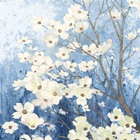 Dogwood Blossoms I Indigo Fine Art Print