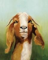 Got Your Goat v2 Fine Art Print