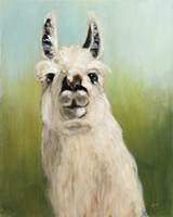 Whos Your Llama I Fine Art Print