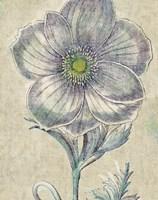 Belle Fleur II Crop Linen Fine Art Print