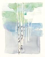 Aspens I Fine Art Print