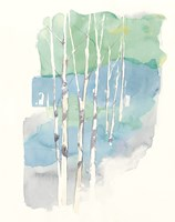 Aspens II v2 Fine Art Print