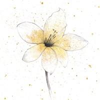 Gilded Graphite Floral II Fine Art Print