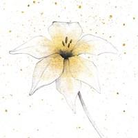 Gilded Graphite Floral V Fine Art Print