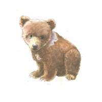 Into the Woods Bear Cub Fine Art Print