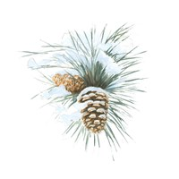 Into the Woods Pinecone II Fine Art Print