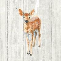 Into the Woods III no Border on Barn Board Fine Art Print