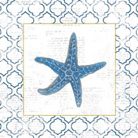 Navy Starfish on Newsprint with Gold Fine Art Print