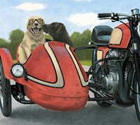 Born to be Wild Crop Fine Art Print