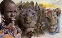 Africa Lions Fine Art Print