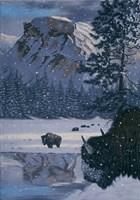 Snowing Fine Art Print
