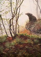 Black Bear Sitting On Overhang Fine Art Print
