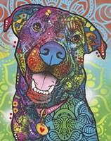 Louie Fine Art Print