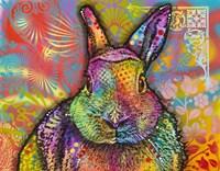 Hare Fine Art Print