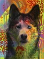 Husky's Eye Fine Art Print