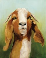 Got Your Goat Fine Art Print