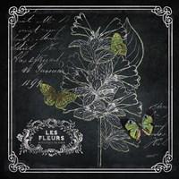Chalkboard Botanical II Fine Art Print