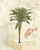 Floridian II Fine Art Print