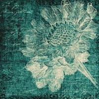 Aqua Vintage Botanical Fine Art Print