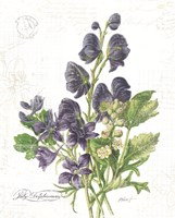 July Delphinium on White Fine Art Print