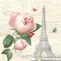 Roses in Paris IV Framed Print