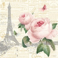 Roses in Paris III Fine Art Print