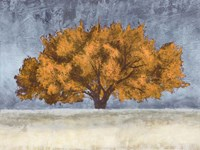 Golden Oak Fine Art Print