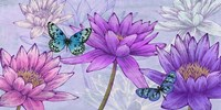 Nympheas and Butterflies Fine Art Print