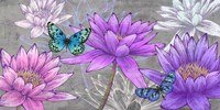 Nympheas and Butterflies (Ash) Fine Art Print