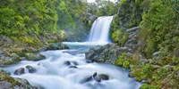 Tawhai Falls, New Zealand Fine Art Print