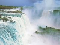 Iguazu Falls, Brazil Fine Art Print