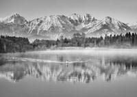 Allgaeu Alps and Hopfensee lake, Bavaria, Germany (BW) Fine Art Print
