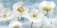 Washed Poppies (Aqua) Fine Art Print