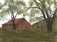 The Old Brown Barn Fine Art Print