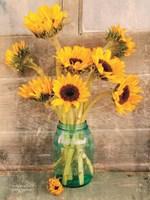 Country Sunflowers I Fine Art Print
