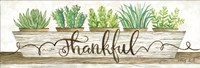 Thankful Succulent Pots Fine Art Print