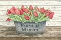 Farmer's Market Tulips Fine Art Print