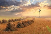 Amish Country Sunrise Fine Art Print
