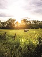 Daybreak in the Country I Fine Art Print
