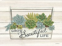Beautiful Life Succulents Fine Art Print